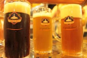 Dunkel, golden and munich beer