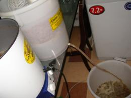saigon home brewers